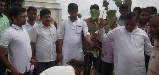 Team Kaushalam Fou ndation with MP Bohra during the plantation drive in Bhapura